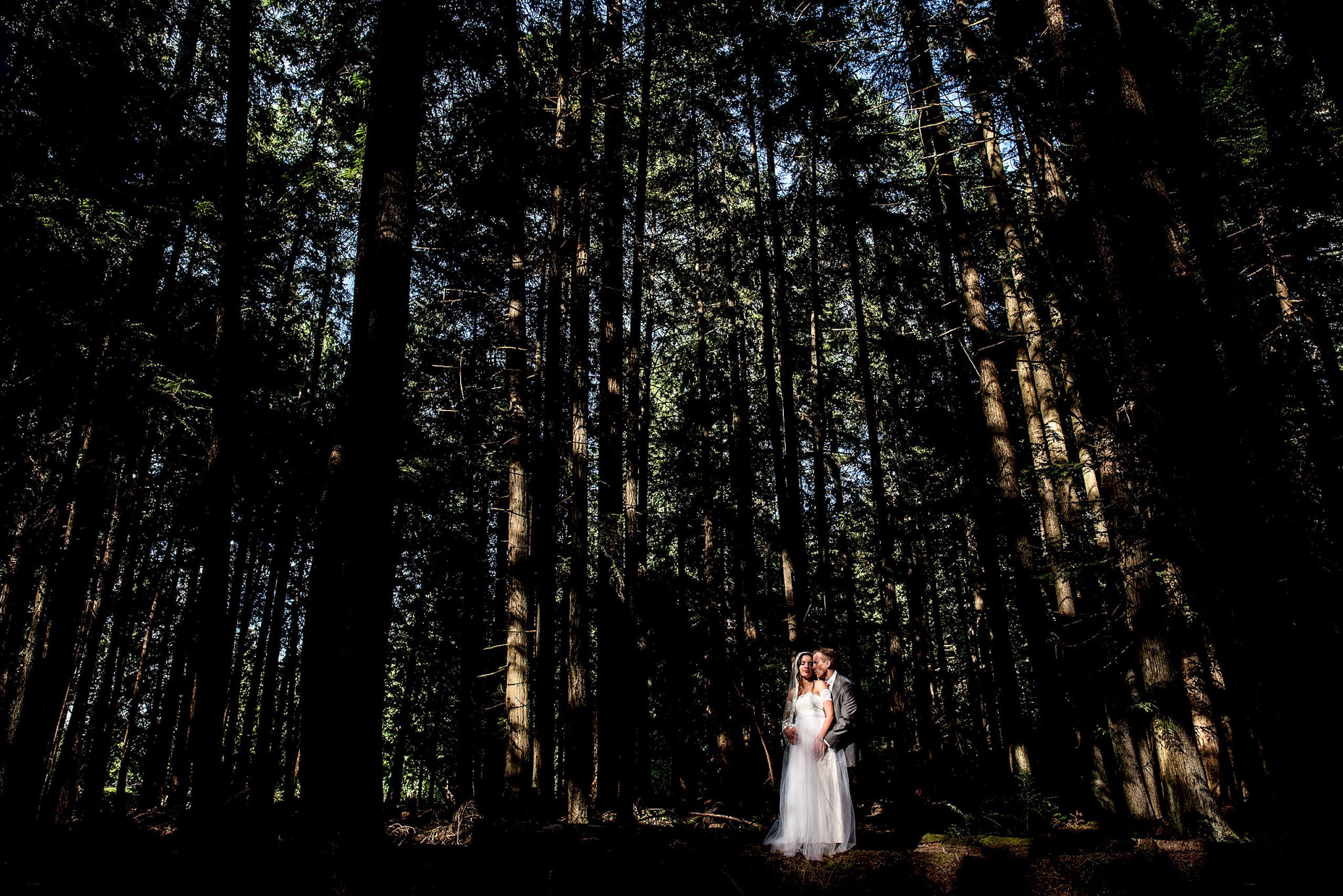bride and groom embracing each other in the forest
