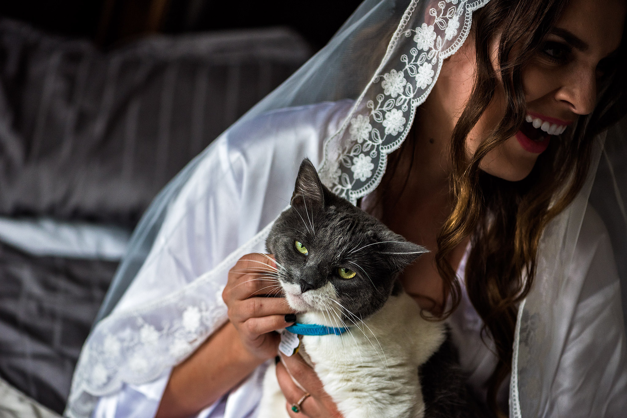 a bride holding her cat - Qualicum Wedding Photographer