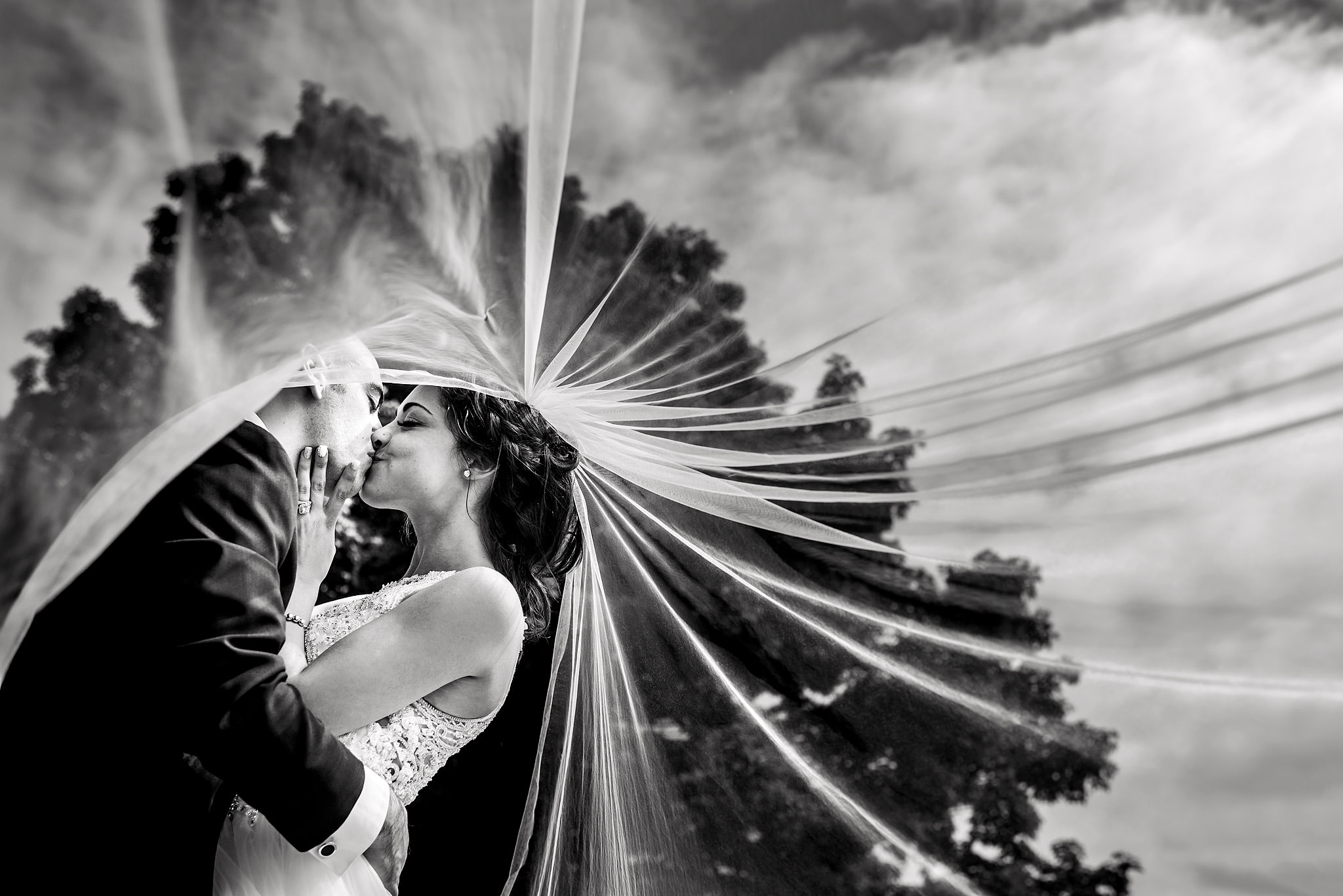 bride and groom kissing in front of a tree with the bride's veil flowing in the wind