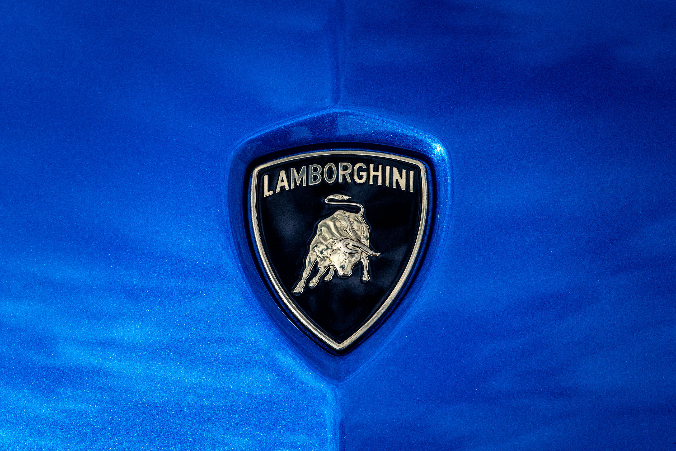 metallic blue Lamborghini aventador close up photograph of the decal