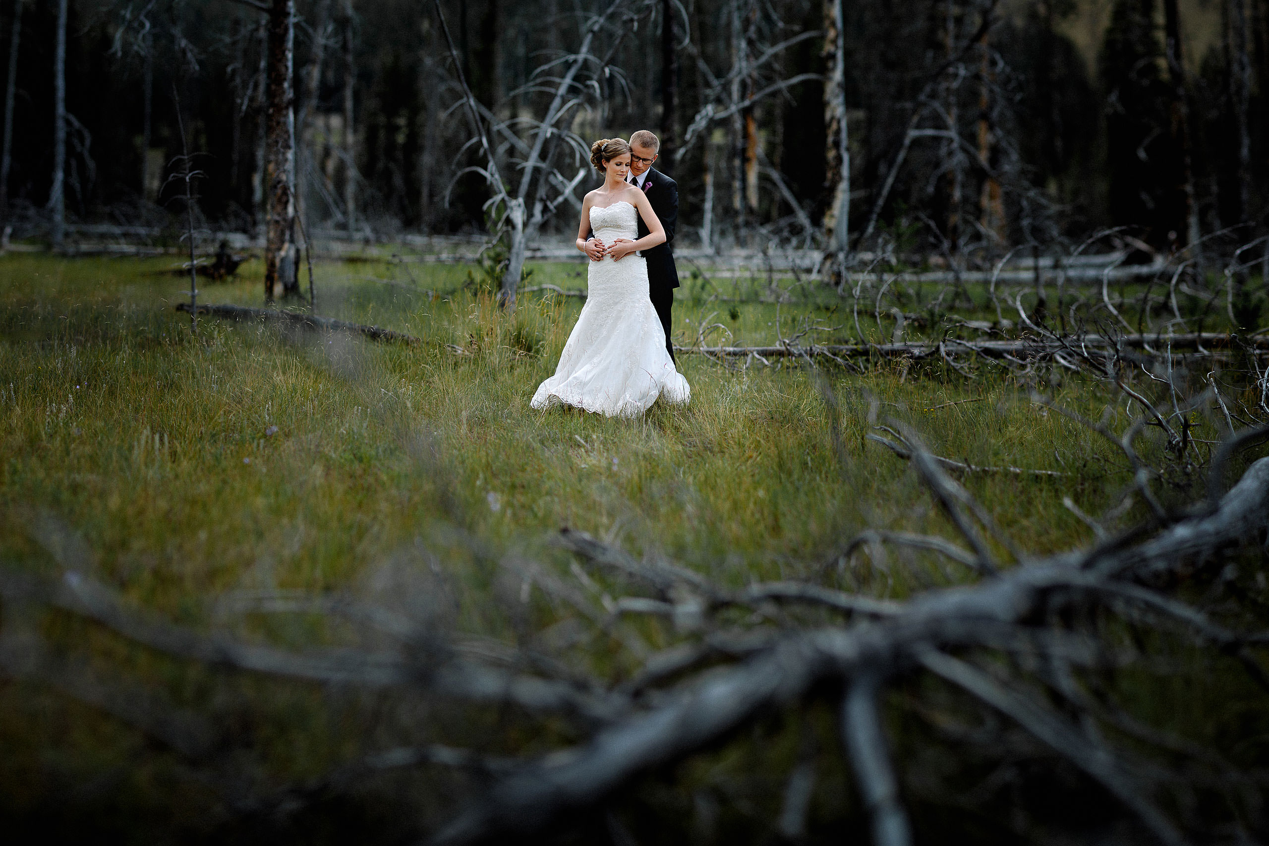 bride and groom embracing in a forest with a fallen tree in the foreground