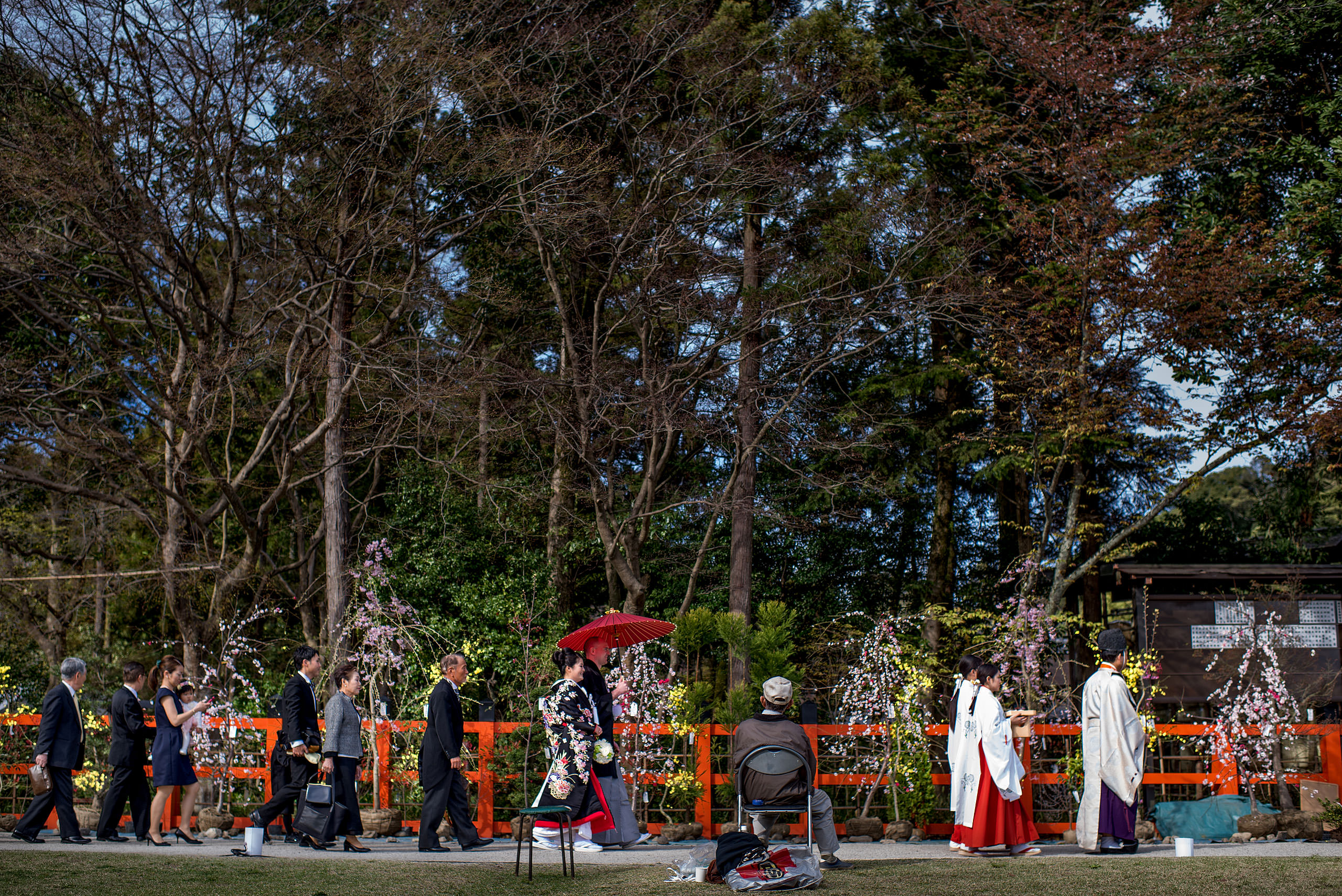 a Japanese wedding party walking by trees by Japan Destination Wedding Photographer Sean LeBlanc