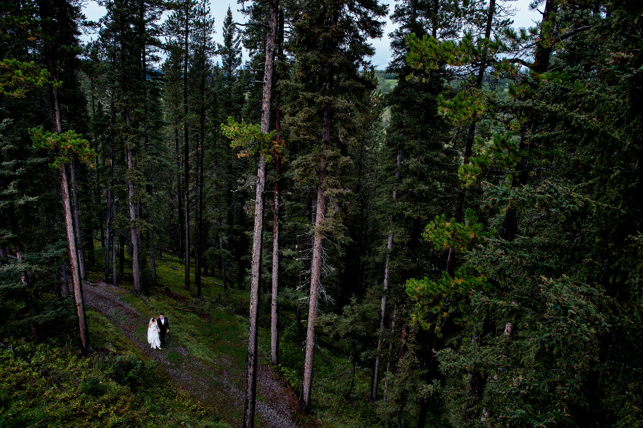 bride and groom walking in the forest at Priddis Azuridge Wedding by sean leblanc