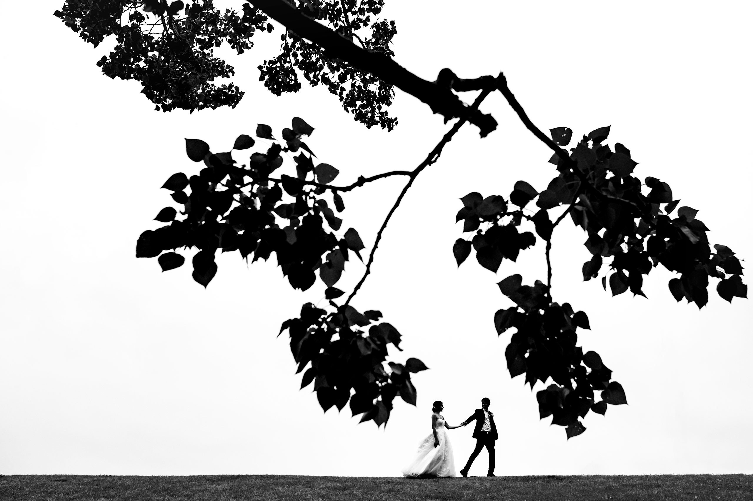 bride and groom walking in a park by a large tree by award winning photographer sean leblanc