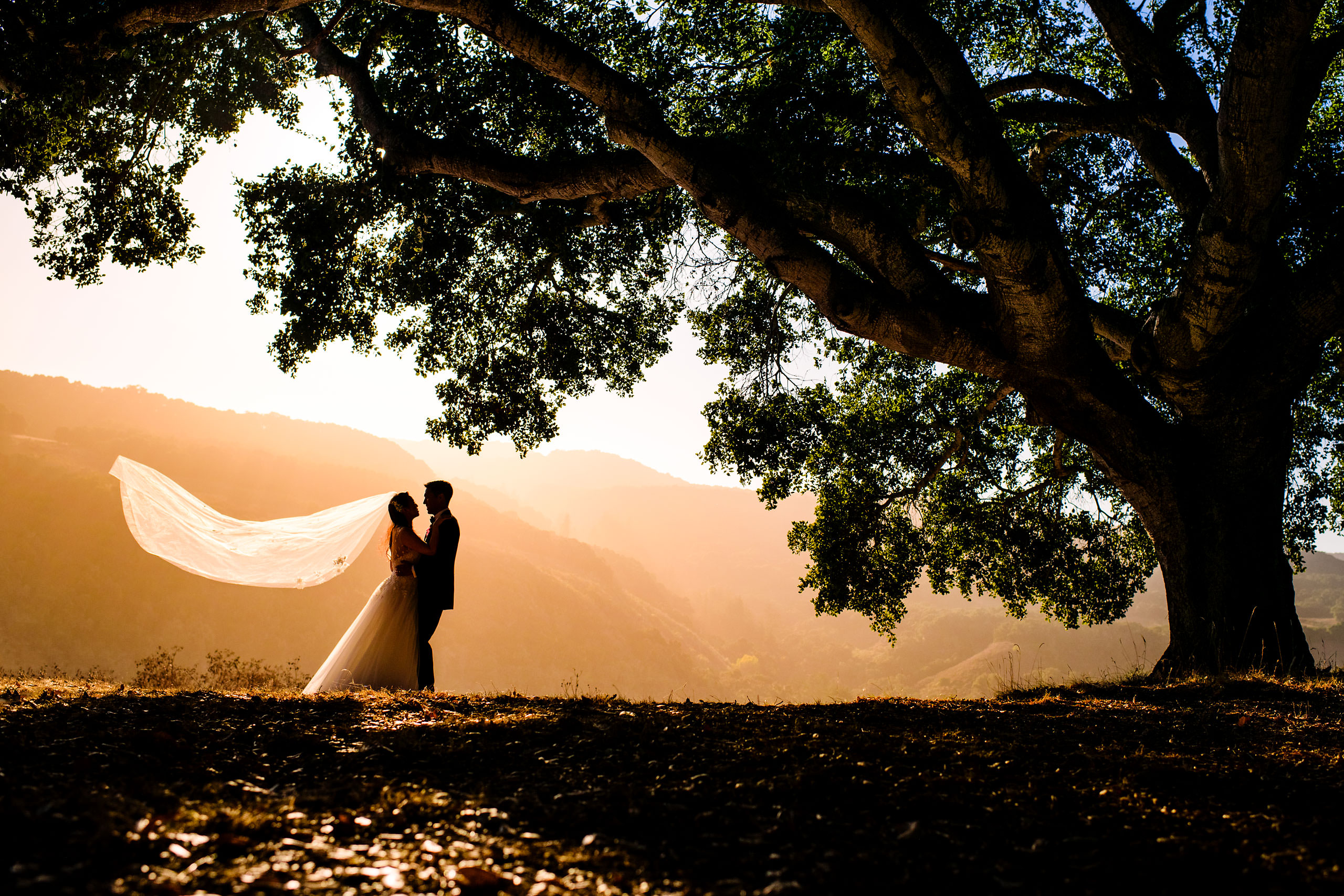 The yoga platform portrait by Carmel Valley Ranch Wedding Photographer Sean LeBlanc